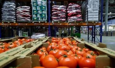 Россия Фарғонадан помидор ва қалампир импорт қилишга тақиқ қўйди