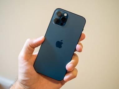Хивада чет эллик сайёҳнинг Iphone 11 pro русумли телефони топиб  берилди (фото)