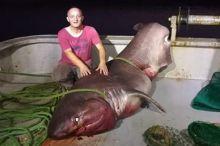 Туркиялик балиқчилар бир тонналик акулани тутишди (видео)