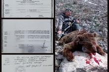 Rossiyalik ovchi tomonidan otib o'ldirilgan ayiq bo'yicha Ekologiya qo'mitasi munosabat bildirdi