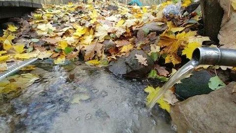 Ўзбекистонда мамлакатдаги захиралардан 69 фоиз кўпроқ сув истеъмол қилинмоқда