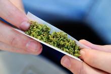 """Тошкентда """"Нексия"""" йўловчиси ёнидан 3,5 килодан ортиқ марихуана чиқди"""