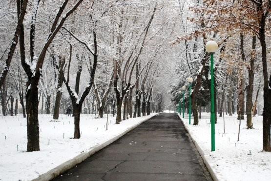 Ўзбекистонда 25 январь куни қандай об-ҳаво кутилаётгани маълум қилинди