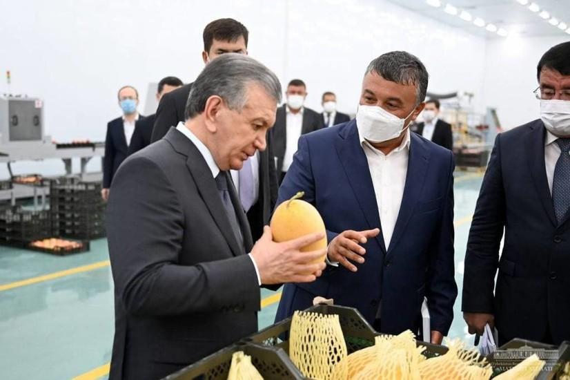 Президент Шерободдаги агросаноат корхоналарини кўздан кечирди