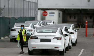 Tesla иккита янги бюджет автомобил моделини чиқаради