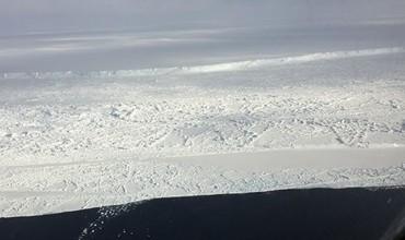 Аргентиналик олимлар Антарктидада турли кўкатларни етиштиришни бошлайди