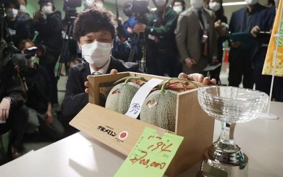 Японияда иккита қовун аукцион орқали 25 минг долларга сотилди