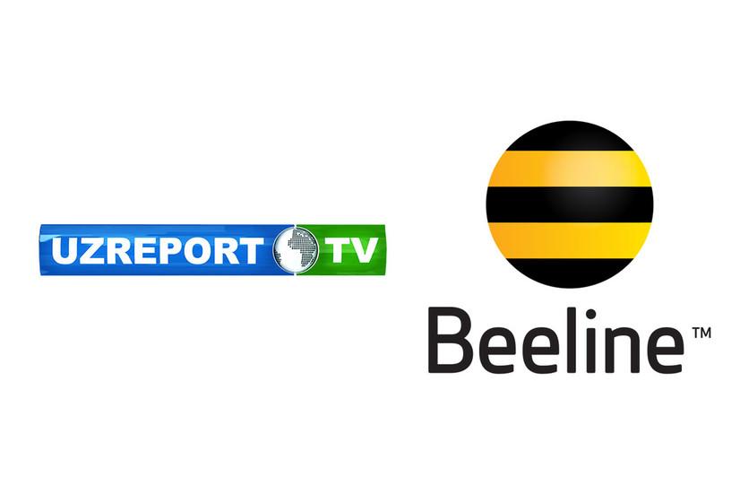 UzReport ТV телеканали Beeline'ни судга берди