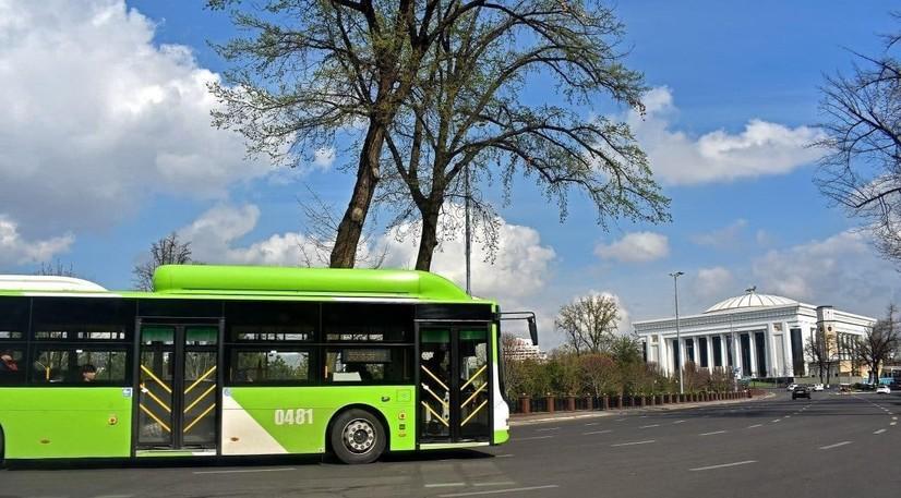 Тошкентдаги айрим автобус йўналишлари вақтинча ўзгарди