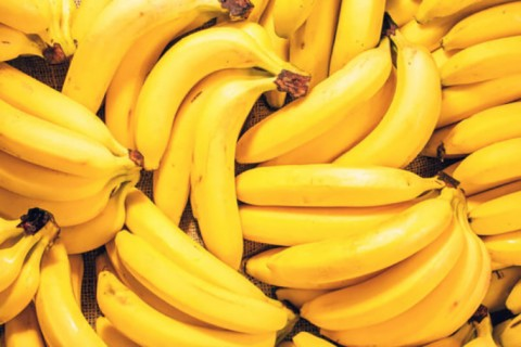 Олимлар: иқлим ўзгариши туфайли 2050 йилга келиб банан бутунлай йўқолиб кетиши мумкин
